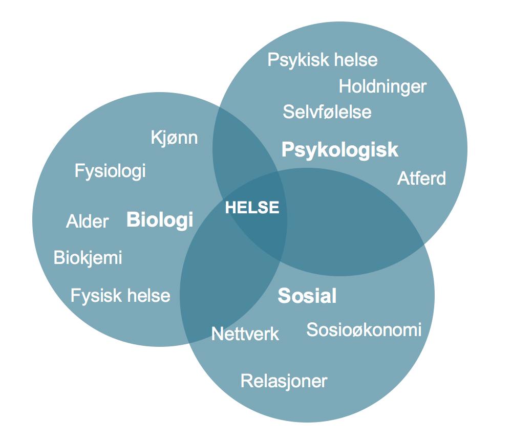 BioPsykososial 2
